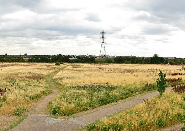 Tottenham Hale Green and Open Spaces